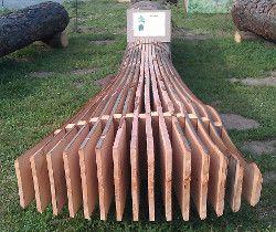 Holzstamm-Buche
